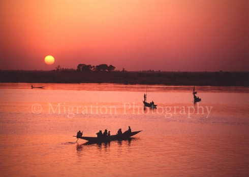 Canoes on the Niger in Mali